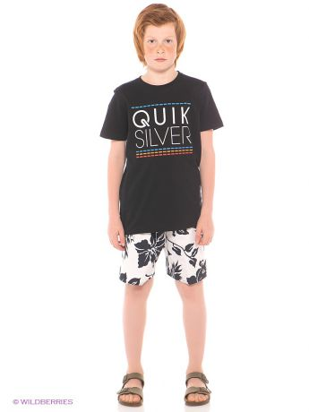 Quiksilver Шорты  SHRIMP TRUCK VL UE18 YOUTH
