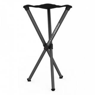 Walkstool Basic B60