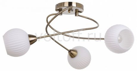Люстра на штанге Spot Light Pavia Brass 8270311