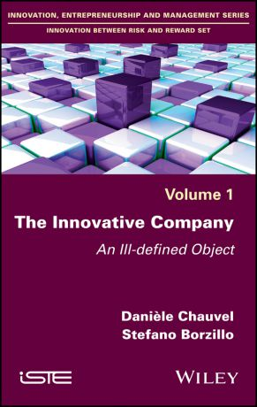 Daniele Chauvel The Innovative Company. An Ill-defined Object