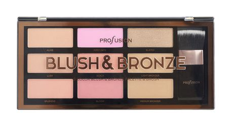 Profusion Artistry Palette Blush and Bronze
