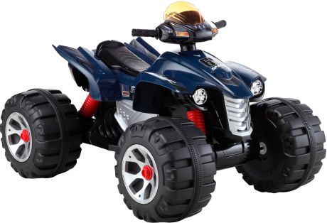 Eelectric Quad Bike