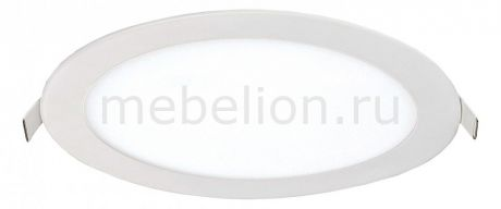 Favourite Flashled 1341-24C