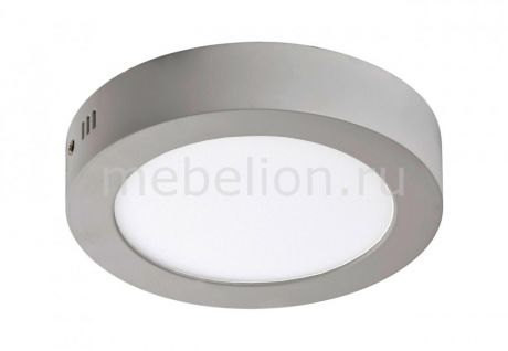 Favourite Flashled 1348-12C