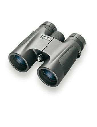 Бинокль Bushnell 8х32 Powerview