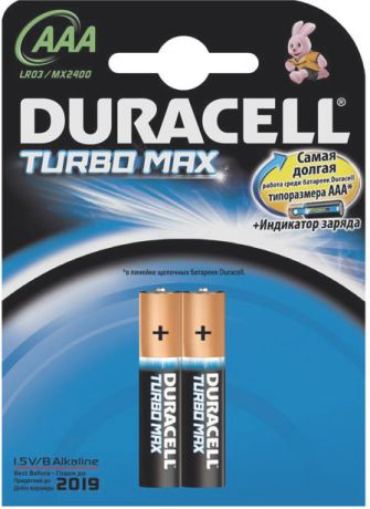 Duracell Turbo Max AAA (2 шт)